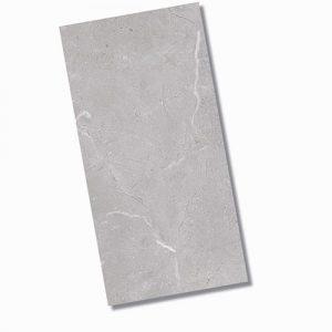 Bora Light Grey Matt FLoor 300x600mm